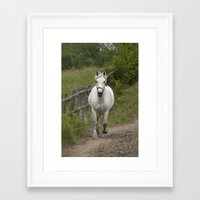 mercedes Framed Art Prints featuring Mercedes - NNEP Ottawa, ON by Tracey Dryka