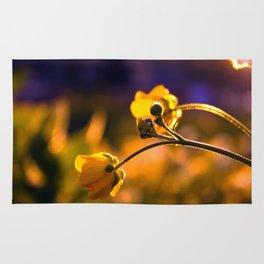 A Wild Flower Sunset Rug