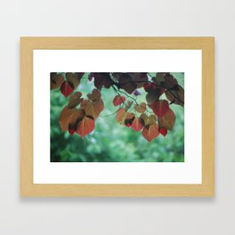 Love, Misted Framed Art Print