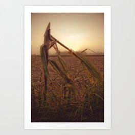 maíz Art Print