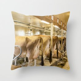 Cows in Milking Barn Throw Pillow