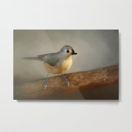 Winter Tufted Titmouse Metal Print