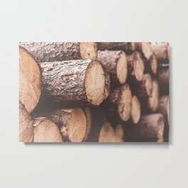 Stack of Felled Trees Close Up Metal Print