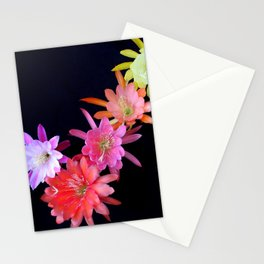 Keeping In Check Stationery Cards