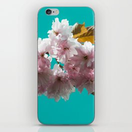 Cheery blossom green background iPhone Skin