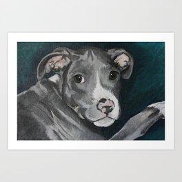 Pluto the Pitbull Art Print