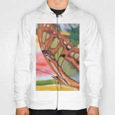 Golden Butterfly Hoody