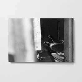 a penthouse das primas Metal Print
