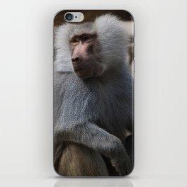 MAGIC MONKEY - Olive Baboon iPhone Skin