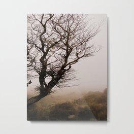 Mist in the Mournes Metal Print