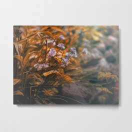 Misty Morning Behind The Garden Wall Metal Print