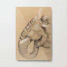 Elephant Sketch Metal Print