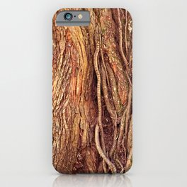 Old Gnarled Ficus Tree Trunk and Aerial Roots Texture iPhone Case