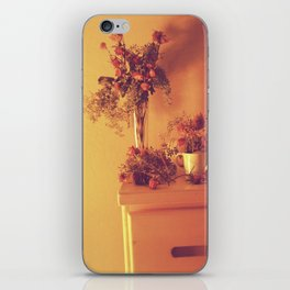 The Dresser iPhone Skin