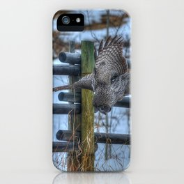 Dive, Dive, Dive! - Great Grey Owl Hunting iPhone Case