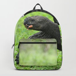 Galapagos Giant Tortoise Backpack