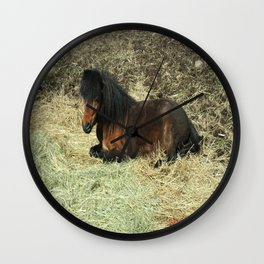 Basking Mini Mare Wall Clock