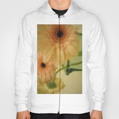 baby-pink daisy-petals ~ flowers Hoody