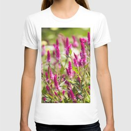 Colorful Celosia T-shirt