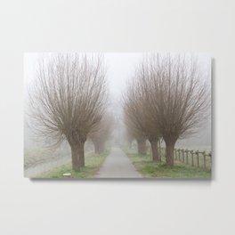 Misty willow lane Metal Print