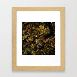 Idyllwild Grottos - Rocks and Reflections Framed Art Print