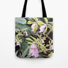 Epicyclia Mabel Kanda Flowers Tote Bag