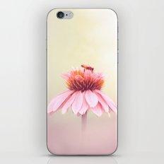 Wee Bee iPhone & iPod Skin