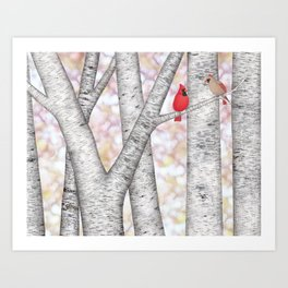 cardinals and birch trees Art Print