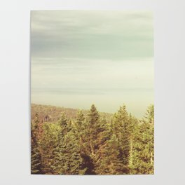 Forest Lookout Poster