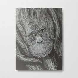 Orangutan Metal Print