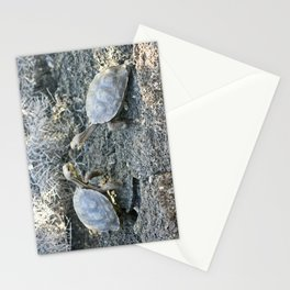 Baby giant tortoises acting tough Stationery Cards