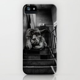 Your point is ? iPhone Case
