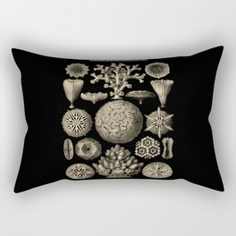 """""""Hexacoralla"""" from """"Art Forms of Nature"""" by Ernst Haeckel Rectangular Pillow"""
