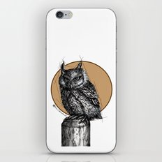 Owl sun iPhone & iPod Skin