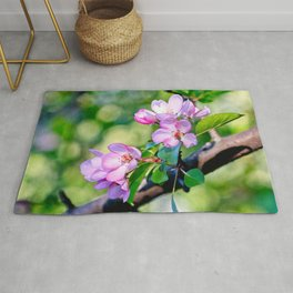 Bunch of pink crabapple flowers on a tree. Green background Rug