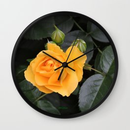 "A Rose Named ""Julia Child"" Wall Clock"