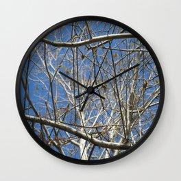 Crisp Cold Florida Morning Wall Clock