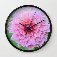Dahlia Decadence Wall Clock