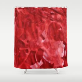 Rags to Riches Shower Curtain