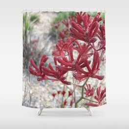 Red Kangaroo Paw Shower Curtain
