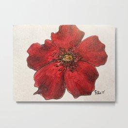 Red Winter Rose Metal Print