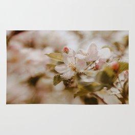 Fall in spring I Rug