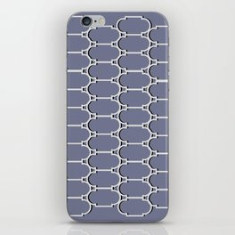 Silver Trellis iPhone Skin