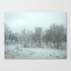 beautiful ice Canvas Print