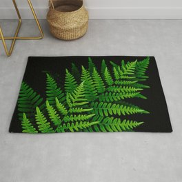 Fern Fronds on Black Rug
