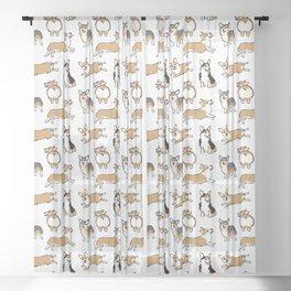 Welsh Corgi Sheer Curtain