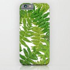 Fern Leaves iPhone 6s Slim Case