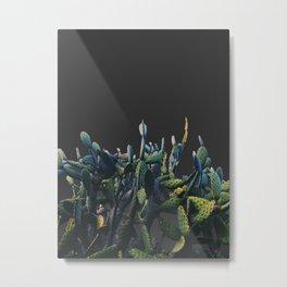 cactus 3d 2 Metal Print