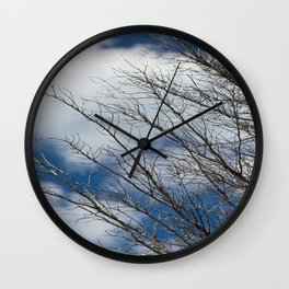 Florida Winter Wall Clock