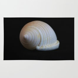 Sea Shell on Black V Rug